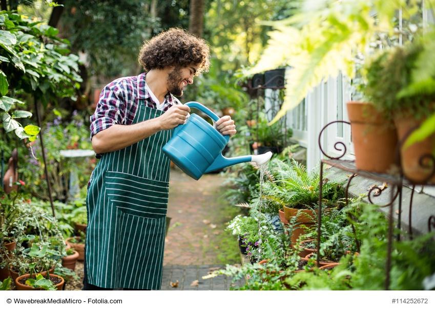 Cómo cuidar tu huerto: 7 claves